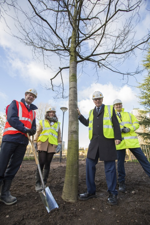Group of four people around a newly planted tree