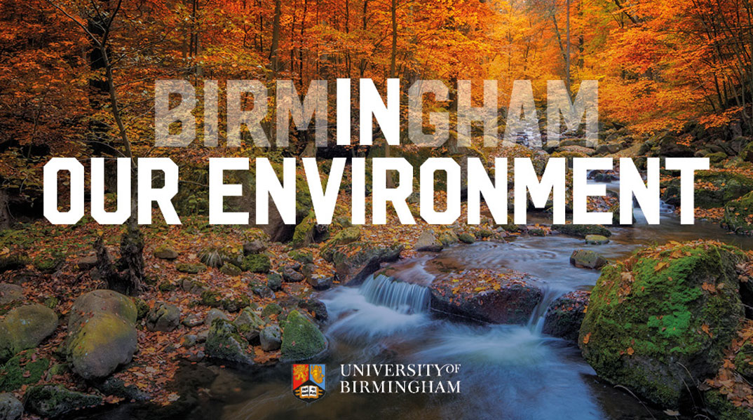 Birmingham In Our Environment